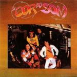 A Cor do Som (1977)